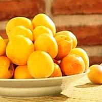 Какие фрукты можно есть при панкреатите